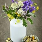 Herbal medicine and plants — Stock Photo