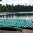 Canoes on lake shore — Stock Photo #7611948