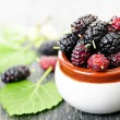 Fresh mulberries — Stock Photo