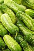Cucumbers background — Stock Photo