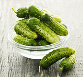 Small cucumbers in bowl — Stock Photo