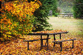 Picnic table with autumn leaves — Stock Photo