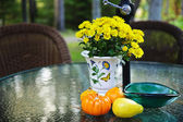 Fall table with gourds and flowers — Stock Photo