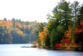 Autumn lake — Stockfoto