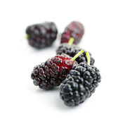 Mulberries close up — Stock Photo