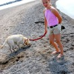 Girl walking dog — Stock Photo
