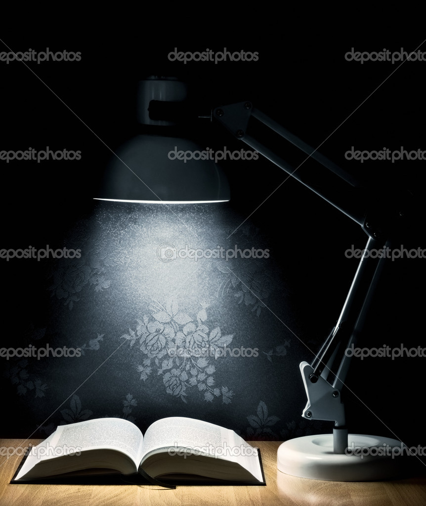 Lamp that illuminates an open book  Stock Photo #7459599