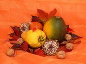 Autumnal arrangement — Stock Photo