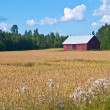 Red barn — Stock Photo #6977339