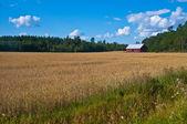 赤い納屋 — ストック写真