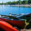 Colorful canoes — Stock Photo #7167725