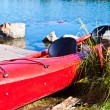 Colorful canoes — Stock Photo #7167729