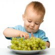 Little boy is eating grapes — Stock Photo