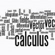 Calculus text clouds — Stock Photo