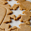 Gingerbread dough — Stockfoto