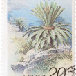 Stamp - cycad tree Cycas revoluta — Stock Photo