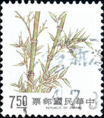 Stamp - bamboo — Stock Photo