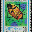 VIETNAM - CIRCA 1982 : stamp - animal insect stink bug — Stock Photo