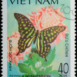 VIETNAM - CIRCA 1983: stamp - animal insect butterfly — Stock Photo