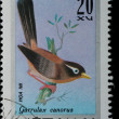 VIETNAM - CIRCA 1978: stamp - animal songbird — Stock Photo #6920977