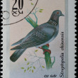 VIETNAM - CIRCA 1978: stamp - animal songbird — Stock Photo #6920998