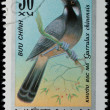 VIETNAM - CIRCA 1978: stamp - animal songbird — Stock Photo