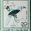 VIETNAM - CIRCA 1982:  stamp - animal bird hornbill — Foto Stock
