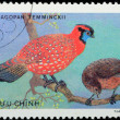 VIETNAM - CIRCA 1978: stamp - animal ornamental bird — Stock Photo