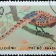 VIETNAM - CIRCA 1978: stamp - animal ornamental bird — Stock Photo #6921212