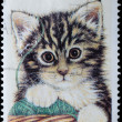 AUSTRALIA stamp shows kitten - Stock Photo