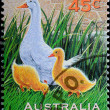 AUSTRALIA stamp shows farm animal duck - Stock Photo
