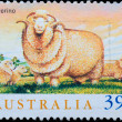 AUSTRALIstamp shows Merino sheep — Stock Photo #6929215