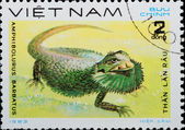 VIETNAM - CIRCA 1983: stamp - animal reptile — Stock Photo