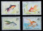 VIETNAM - CIRCA 1980: stamp animal goldfish — 图库照片
