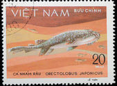 VIETNAM - CIRCA 1980: stamp animal fish shark — Foto Stock
