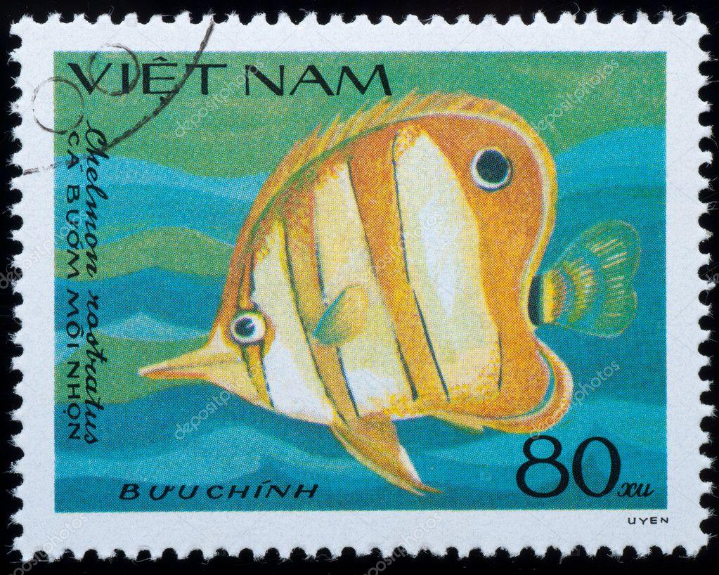 Vietnam circa 1984 stamp animal fish stock editorial for Fish symboled stamp