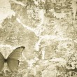 Butterfly grunge wall textured backgriund - Foto Stock