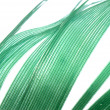 Green feather abstract texture background — Stok fotoğraf
