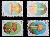キューバ - 1988 年頃: 切手きのこ — ストック写真
