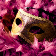 carnival mask — Stock Photo