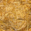Hay, Straw — Stock Photo
