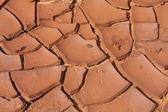 Dry clay — Stock Photo