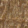 Background of straw — Stock Photo