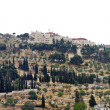 Stock Photo: View of Mount of Olives