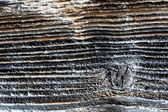Background of charred timber — Stock Photo