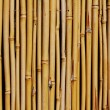 Background of  bamboo fence - Stock Photo