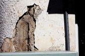 Phenomenon face of cat on wall — Stock Photo