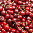 Cherries — Photo