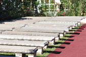 Rows of benches — Stock Photo