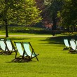 Deck chairs in a park — Photo